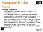european social fund15