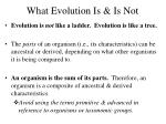what evolution is is not