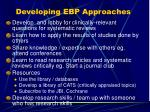 developing ebp approaches