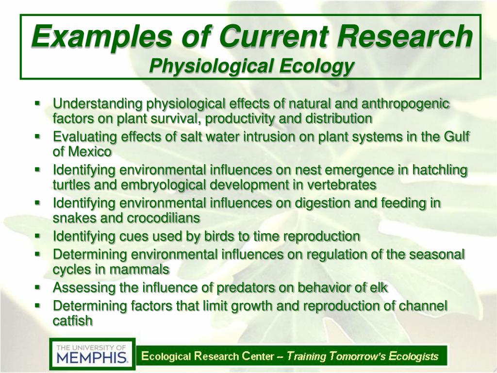 Examples of Current Research