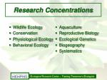 research concentrations