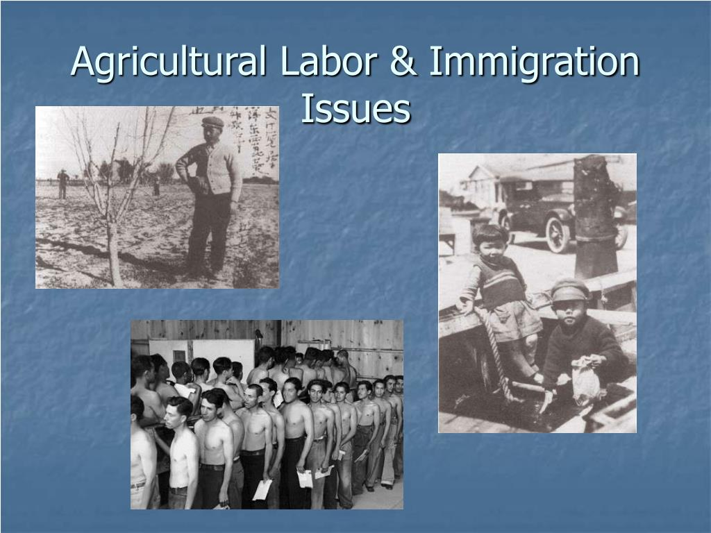 agricultural labor immigration issues l.