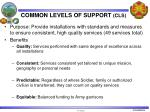 common levels of support cls