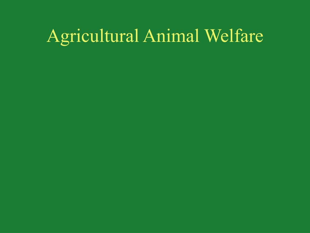 agricultural animal welfare l.