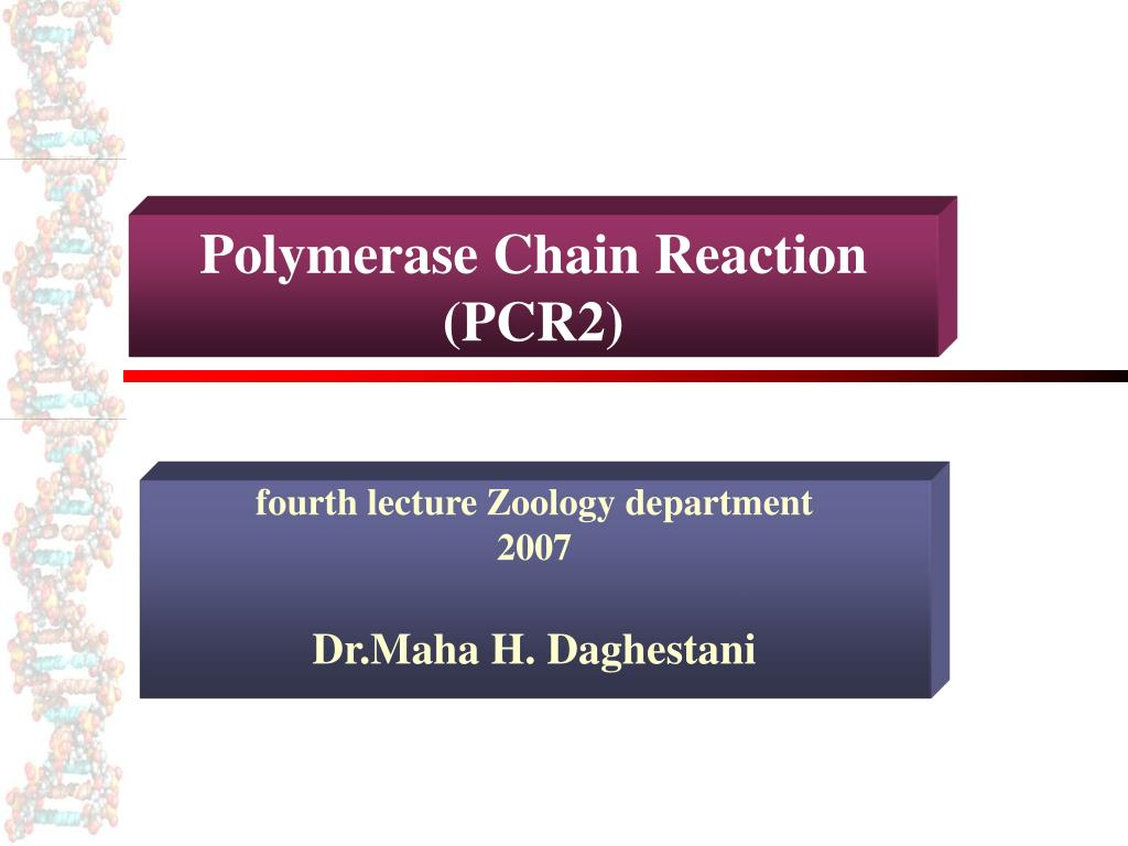 polymerase chain reaction pcr2 l.
