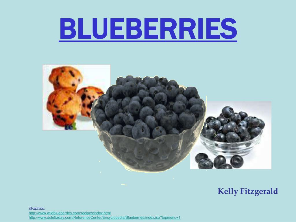 blueberries l.