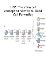 3 22 the stem cell concept as relates to blood cell formation