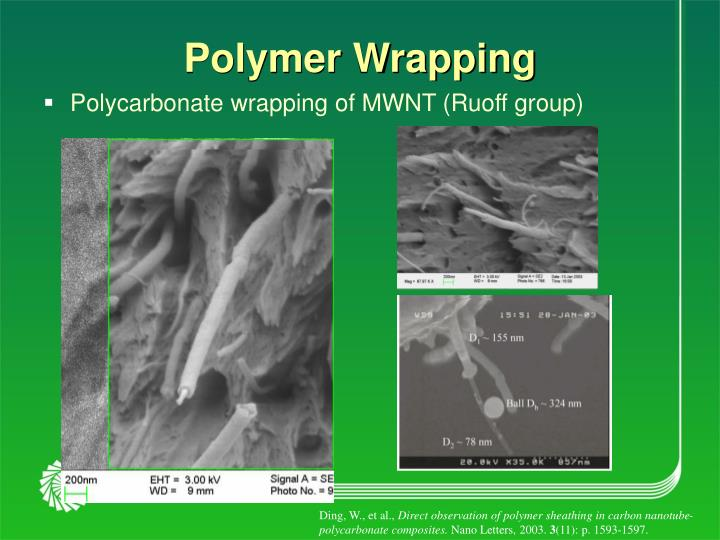 Polymer Wrapping
