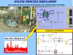 online process simulation