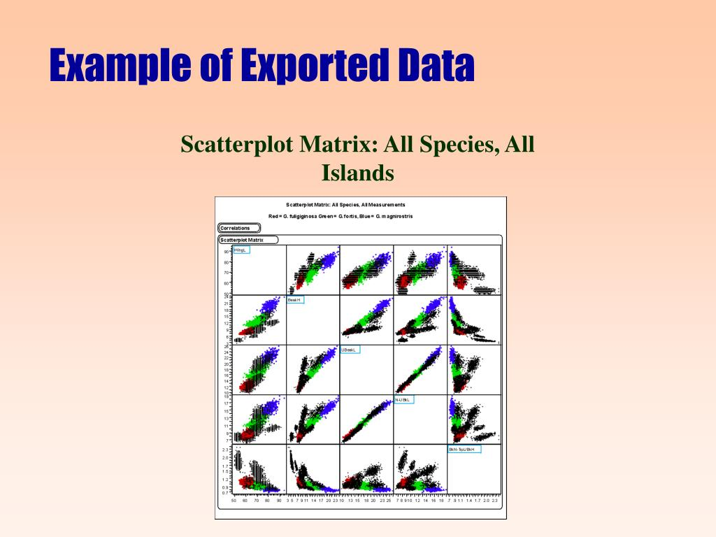 Example of Exported Data