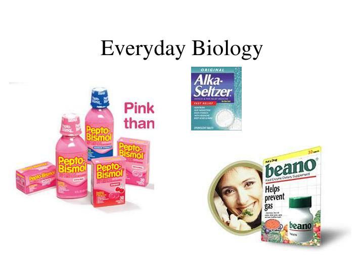 Everyday biology