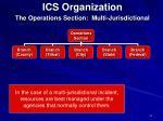 ics organization11