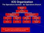 ics organization12