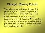 chengdu primary school