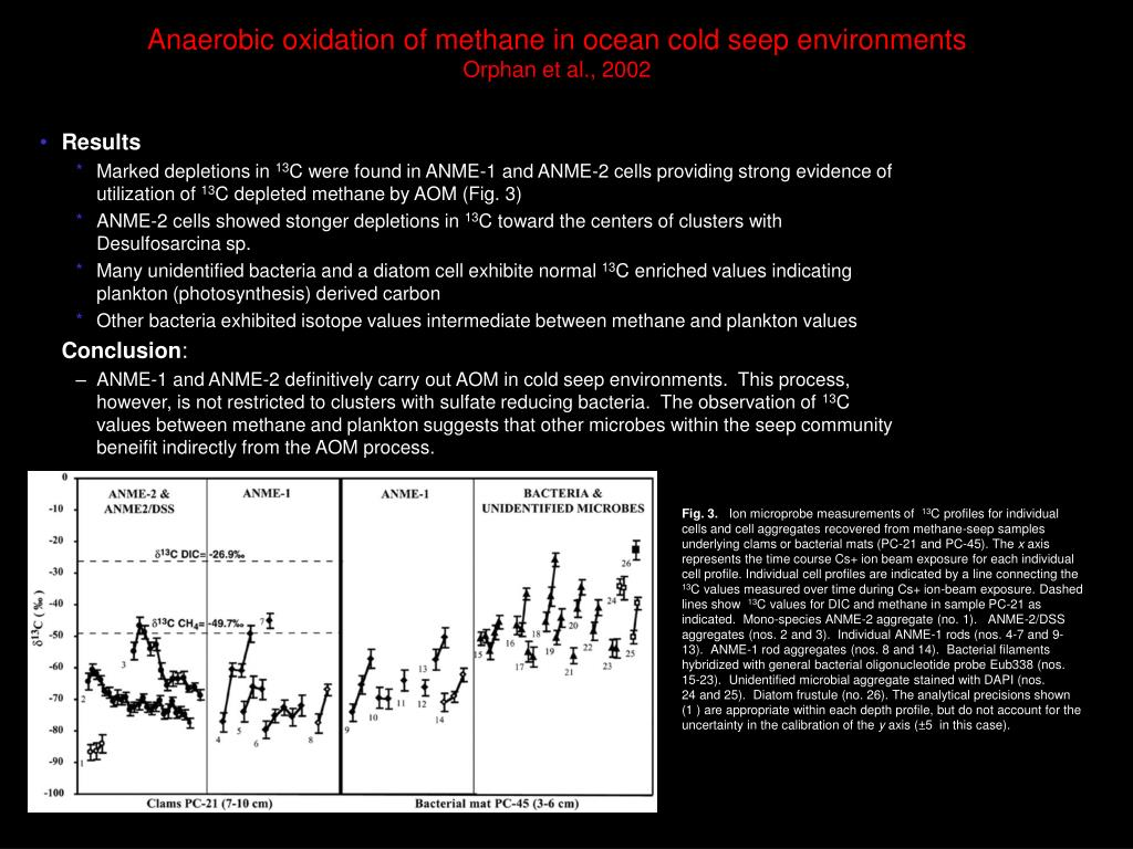 Anaerobic oxidation of methane in ocean cold seep environments