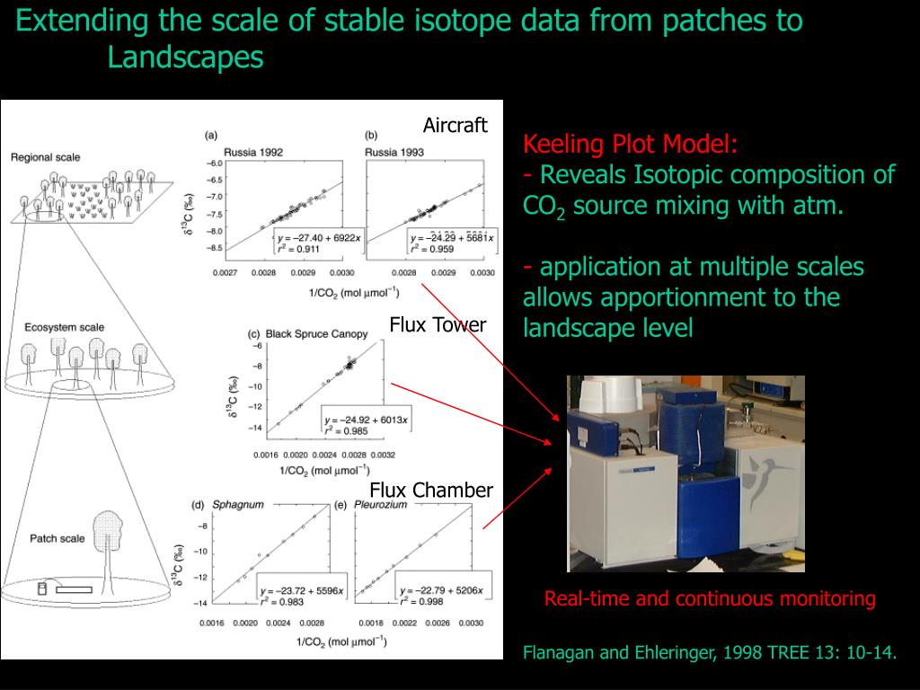 Extending the scale of stable isotope data from patches to