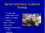 spinal cord injury incidence etiology