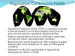 vegetation continuous fields