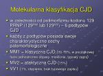 molekularna klasyfikacja cjd