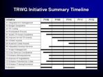 trwg initiative summary timeline