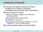 challenges of diversity