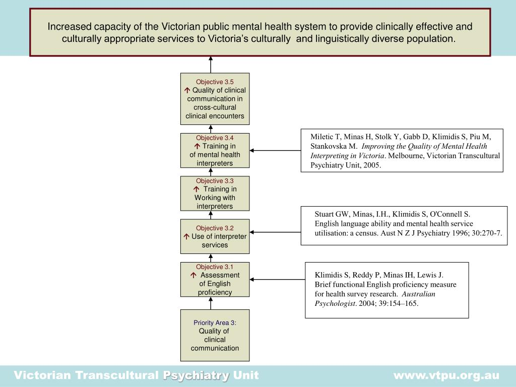 Ppt A Transcultural Mental Health Research Agenda Information For Better Decisions Powerpoint Presentation Id 23413