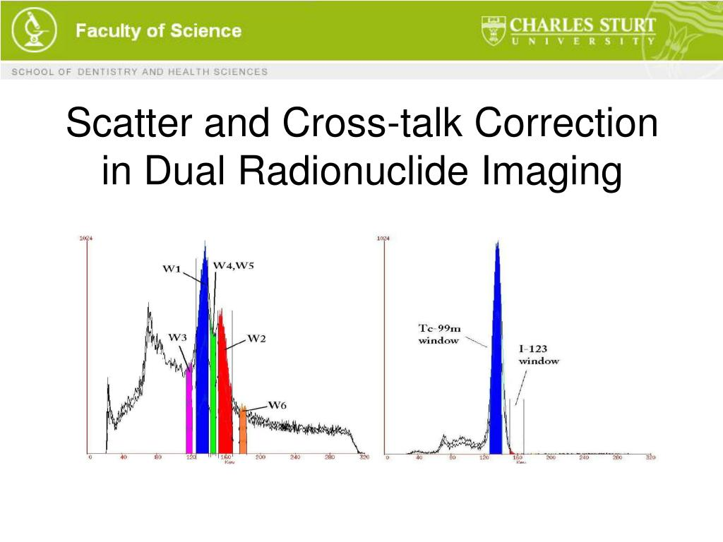 Scatter and Cross-talk Correction in Dual Radionuclide Imaging