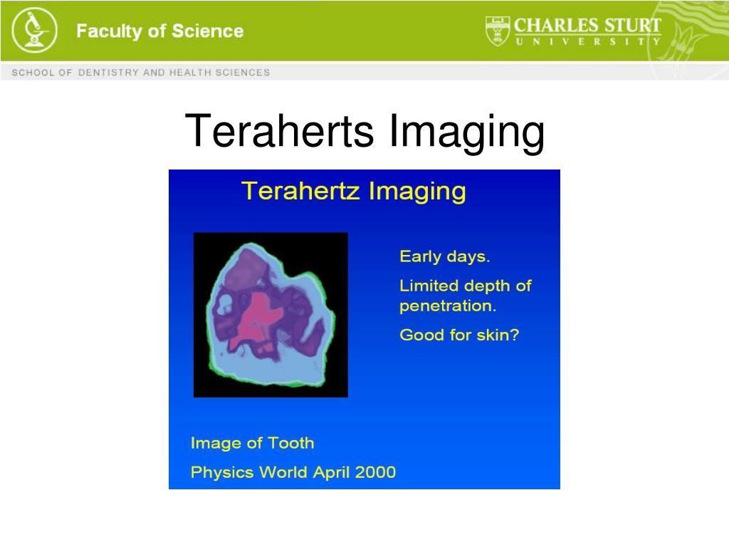Teraherts Imaging