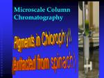 microscale column chromatography