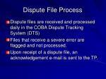 dispute file process
