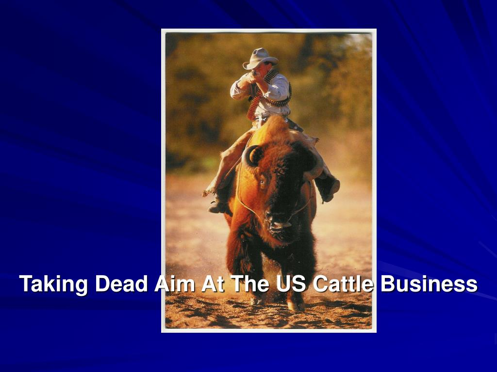 taking dead aim at the us cattle business l.