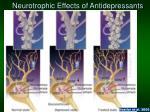 neurotrophic effects of antidepressants