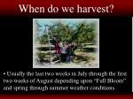 when do we harvest