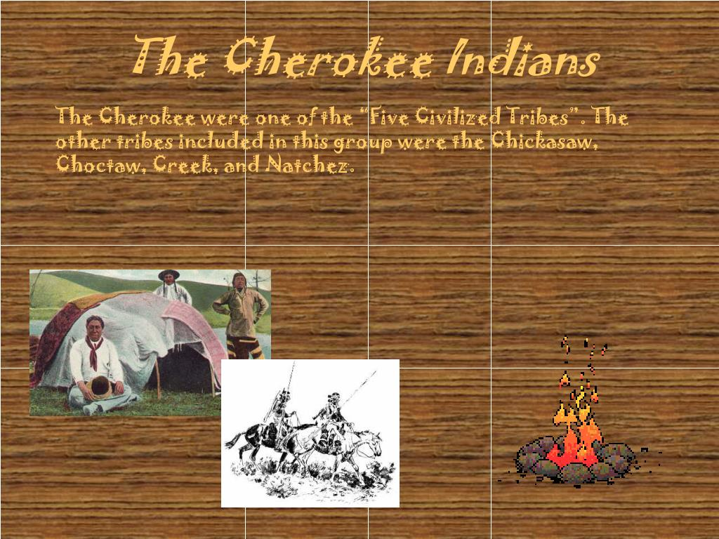 the cherokee indians l.
