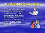the hipaa privacy rule1
