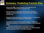summary predicting fracture risk