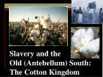 slavery and the old antebellum south the cotton kingdom