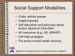social support modalities