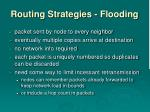routing strategies flooding