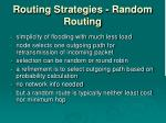 routing strategies random routing