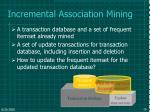 incremental association mining