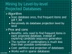 mining by level by level projected databases