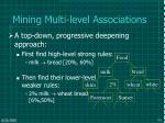 mining multi level associations