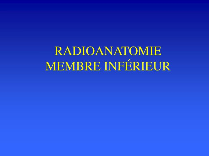 radioanatomie membre inf rieur n.
