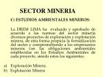 sector mineria4