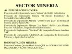 sector mineria5