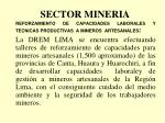 sector mineria7