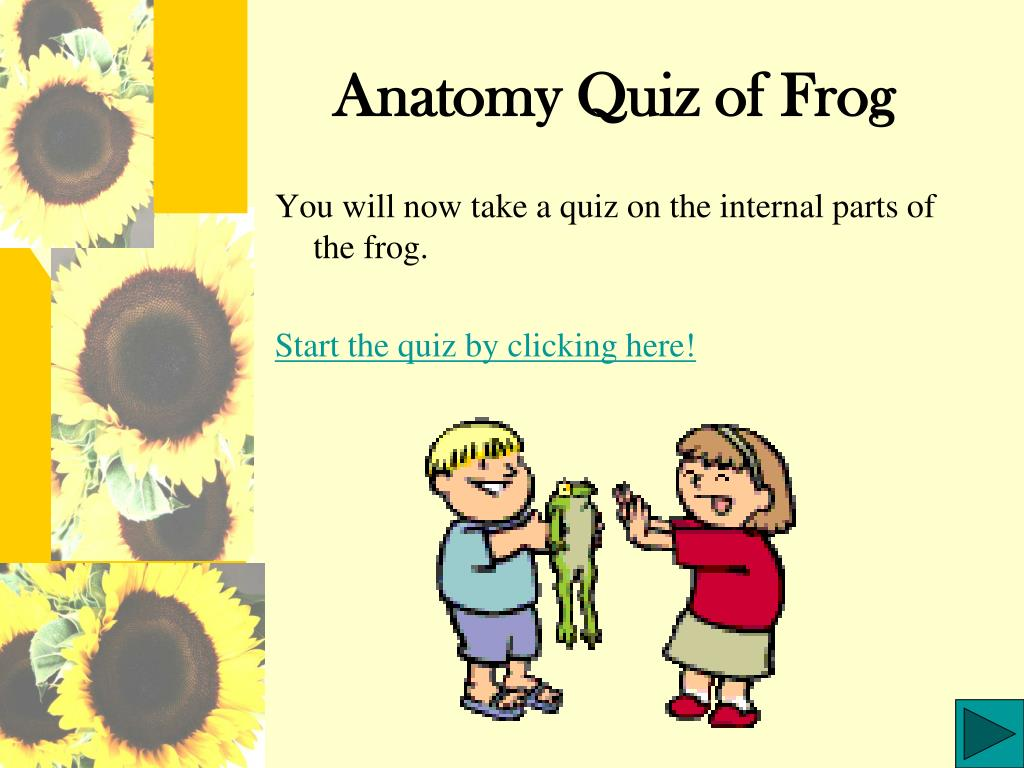 anatomy quiz of frog l.