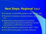 next steps regional input