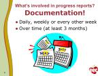 what s involved in progress reports documentation